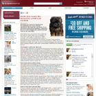 Puppy dog tales: Pet blogging a popular pastime